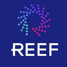 REEF Technology Stock