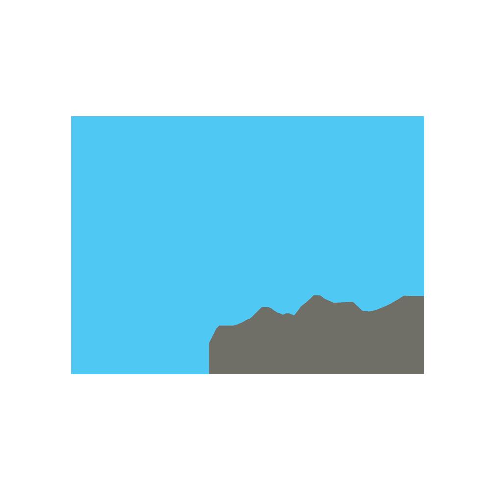 Local Motors Stock