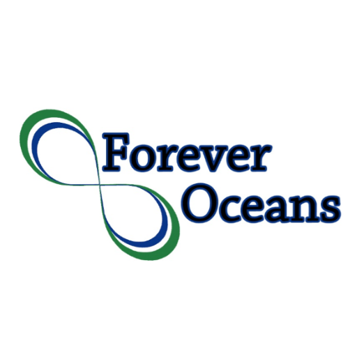 Forever Oceans Stock